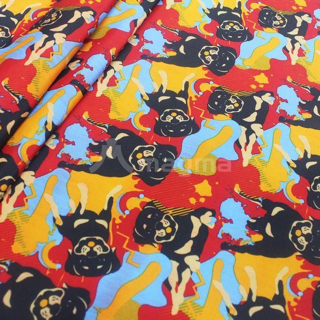 rottweiler-67-AF895